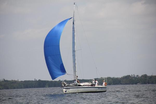 Young Sailing Boat 8.8m