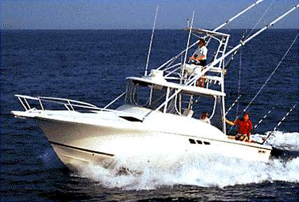 Luhrs Tournament 290 Open Sister Ship - Manufacturer Provided Image