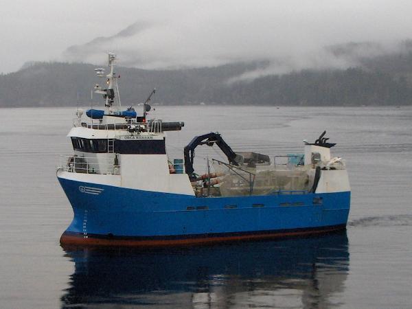 Tender Research, Work Boat, Packer