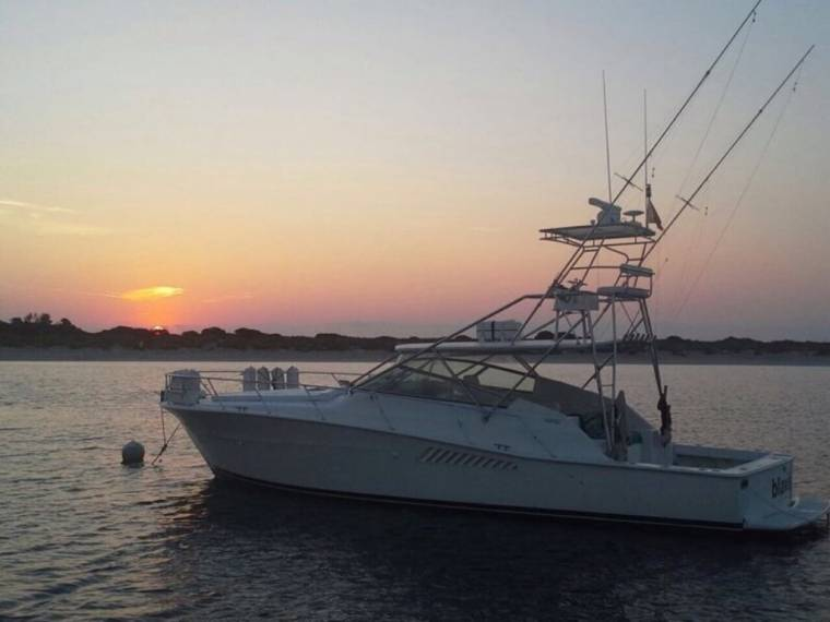 Viking VIKING 43 OPEN