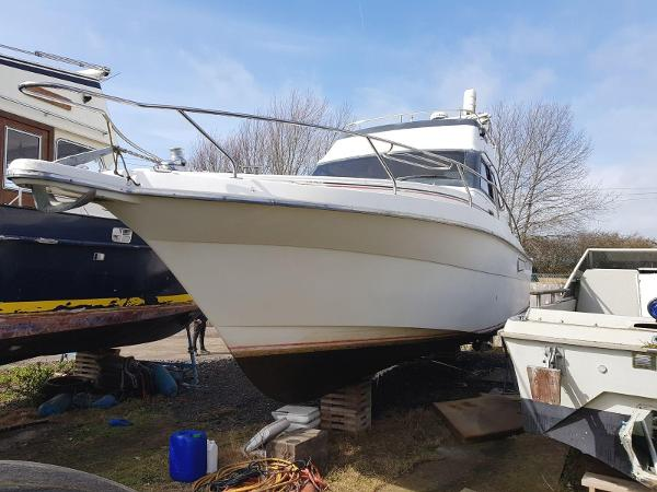 Mares 35 (available)