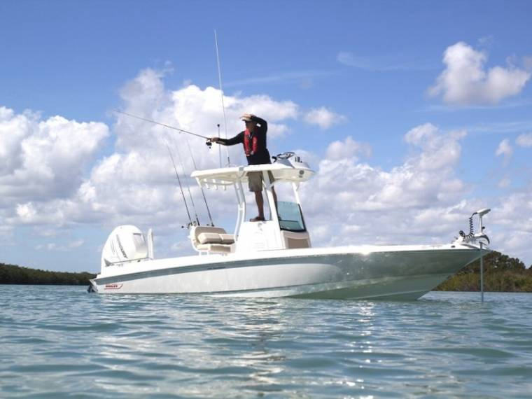 Boston Whaler 240 Dauntless Pro