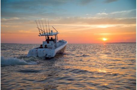 Everglades 295CC