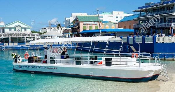 Custom Platform Snorkel