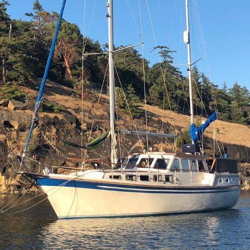 Seafinn 411