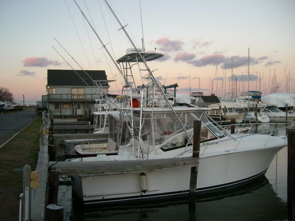 Luhrs 30 Open Photo 1