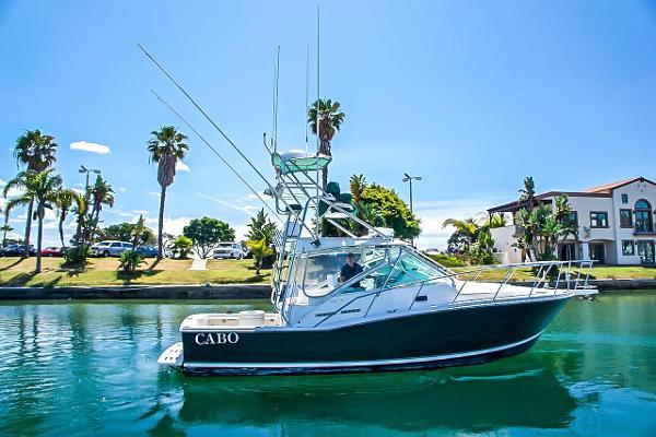 Cabo yachts 31 Express