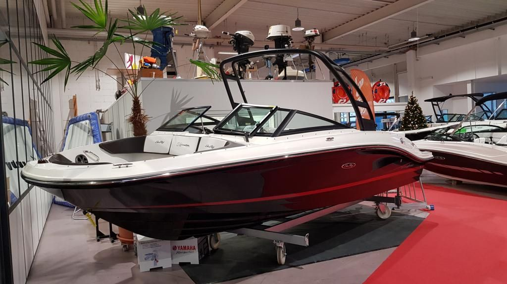 Sea Ray 210 SPXE WBT  Boote Pfister Edition