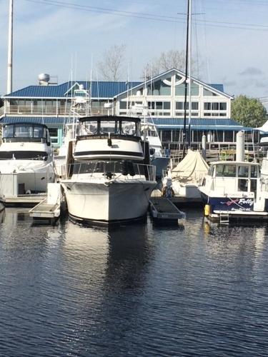 Californian 42' Motor Yacht