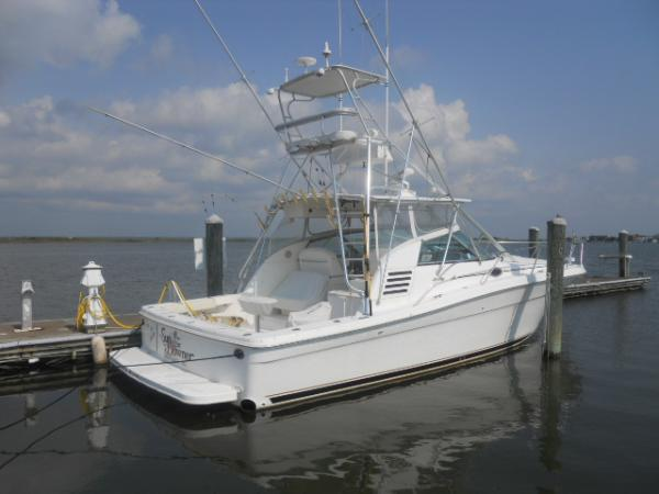 Sea ray sports fishing boats for sale for Sea ray fish