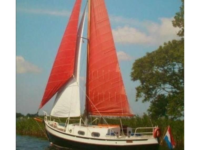 Danish Rose 28
