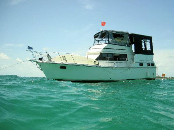 Carver 3607 Aft Cabin Motoryacht Great Reef Shot