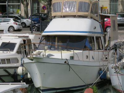 Golden Star trader Sun deck 40