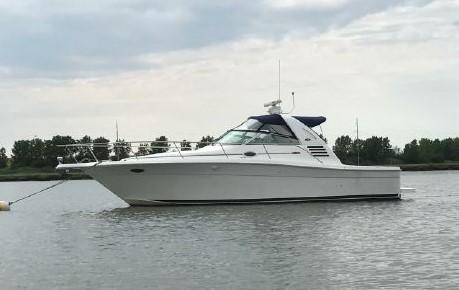 Sea Ray Amberjack Profile