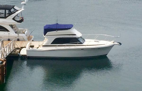 Riviera 33' Convertible  33' Riviera Convertible Sportfish