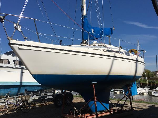 Seamaster 815