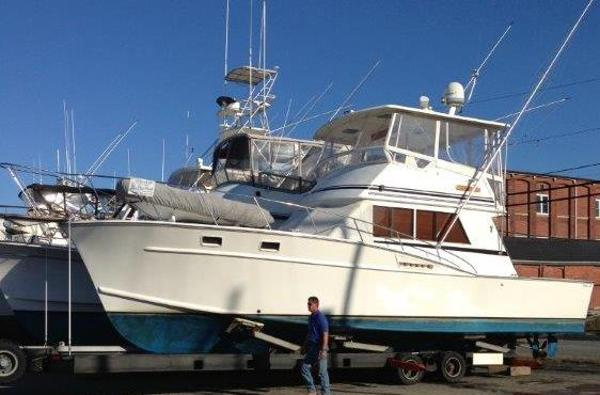 Fortier Convertible Sportfish