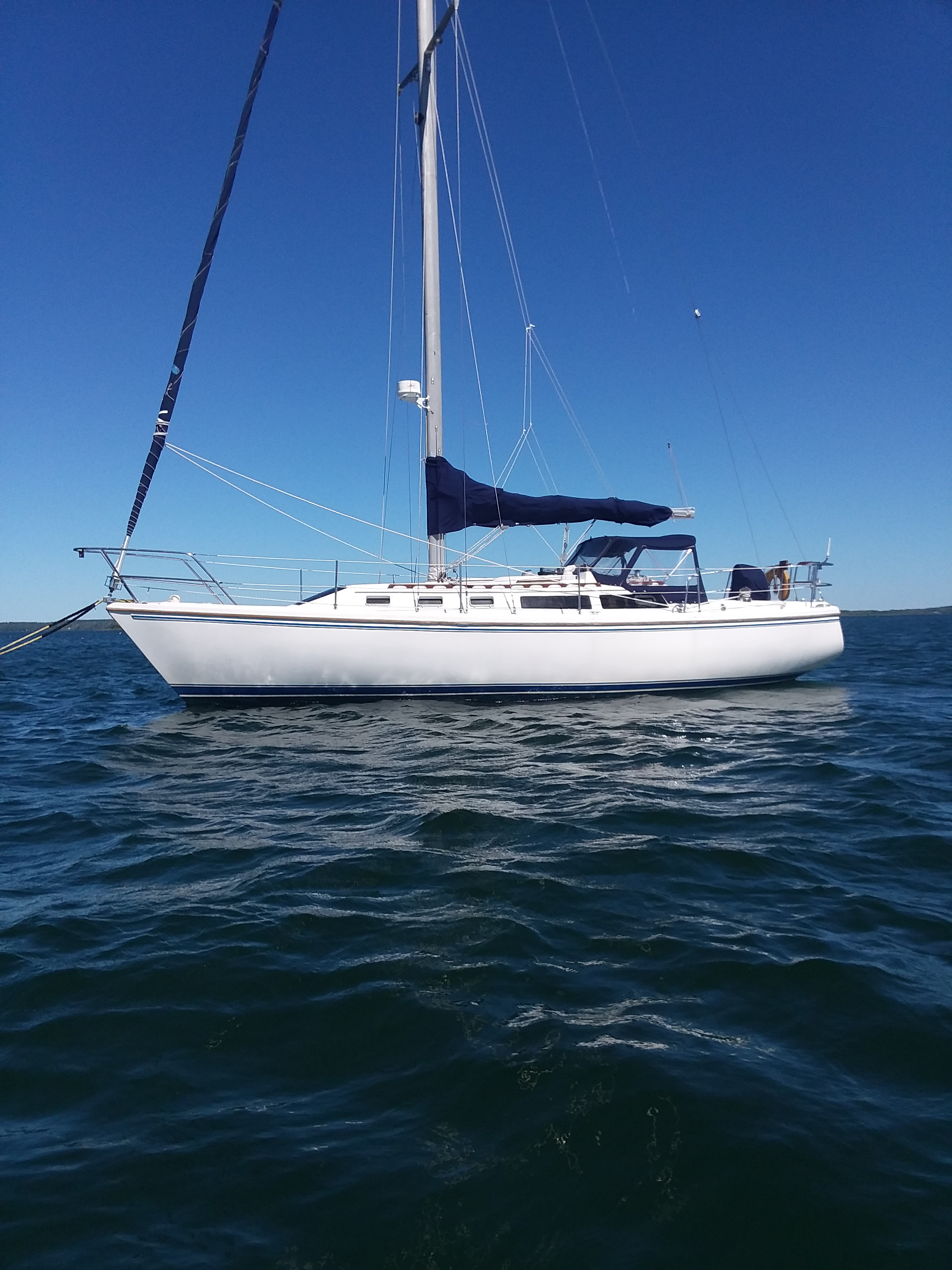 Catalina 34 On Her Mooring