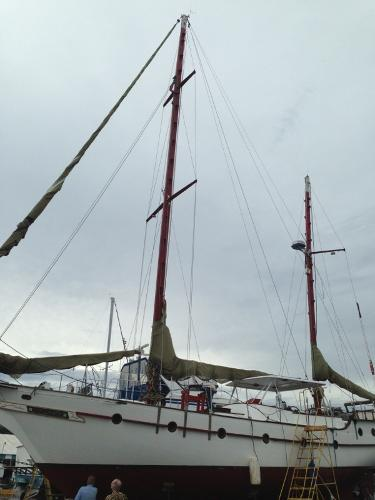 View of Masts