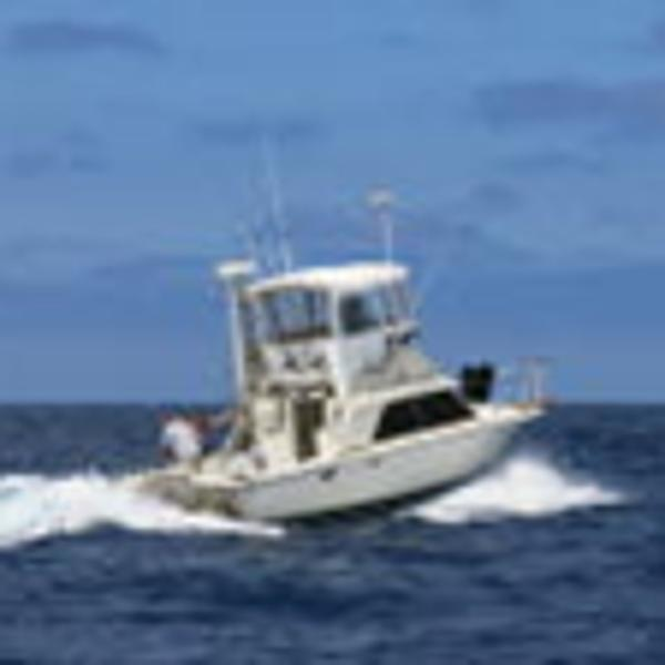 Phoenix 29 Sport fisher