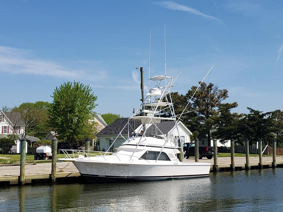 Blackfin 33 Sportfish Bridge