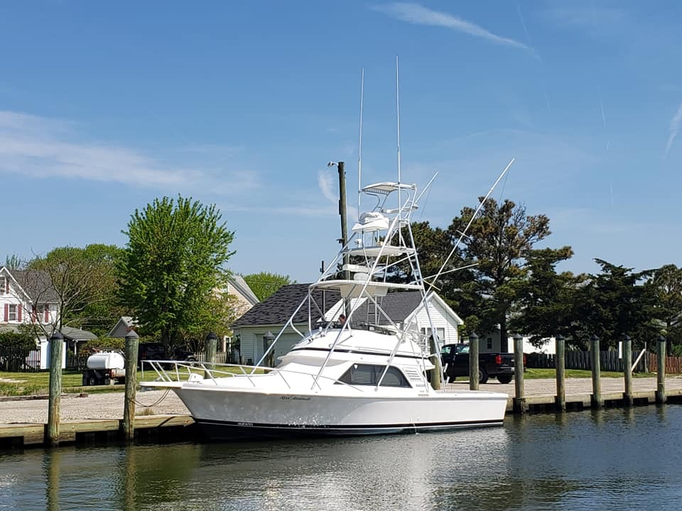 Blackfin 33 Sportfish Bridge