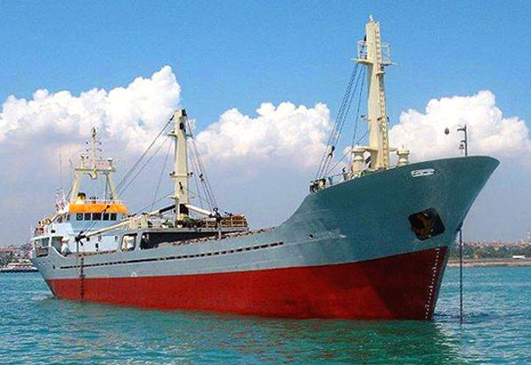 Custom Geared Cargo Vessel