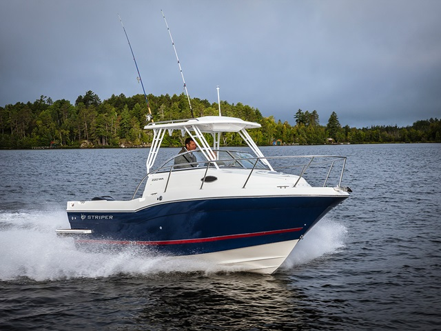 Striper Walkaround 220 WA