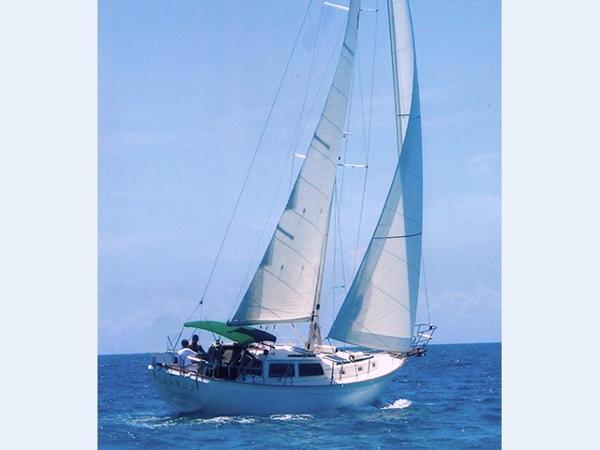 Islander Freeport 38