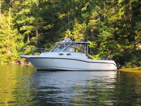 Boston Whaler 305 Conquest Out Cruising