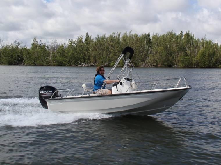 Boston Whaler Boston Whaler 150 Montauk