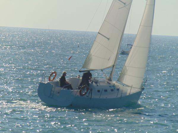 Custom Golfinio 34 Sloop