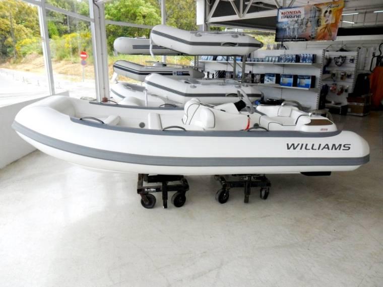 Williams Williams 325 Turbojet RIB