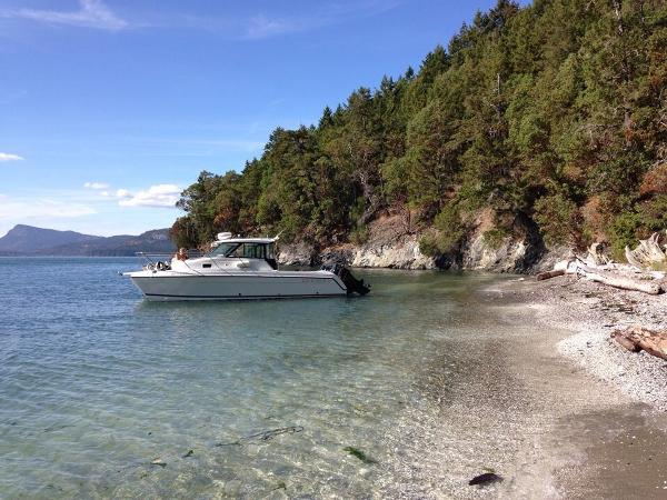 Glacier Bay 2680 Coastal Runner