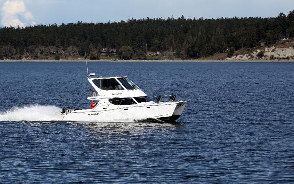 Custom TLD Marine Power Cat 41 Profile