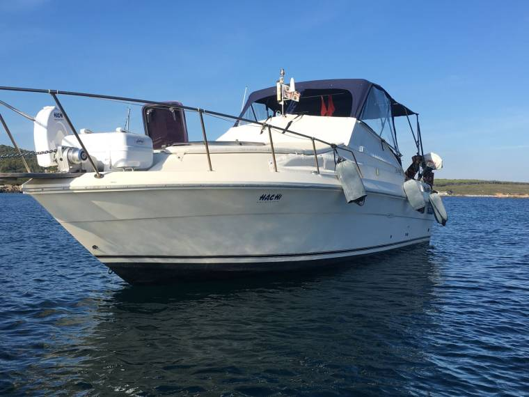 Sea Ray Sea Ray 270 Sundancer