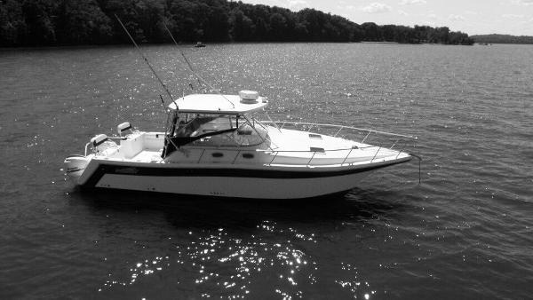 Prokat 3660 Sportfish PRO KAT 36