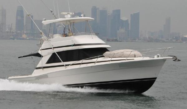 Riviera 39 Platinum