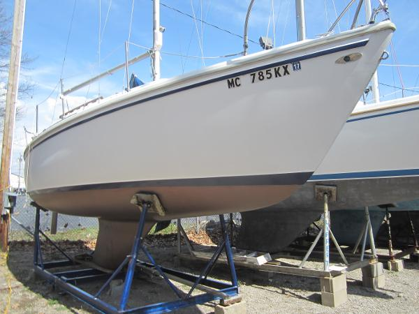Catalina Tall Rig Starboard side forward