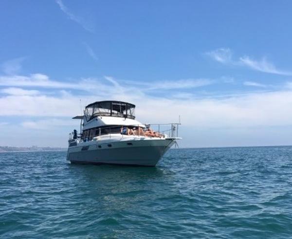 Bayliner 4387 Motoryacht Sailing
