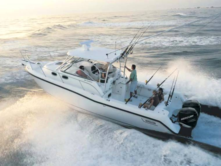 Boston Whaler VENDITA SOSPESA  Boston 305 Conquest