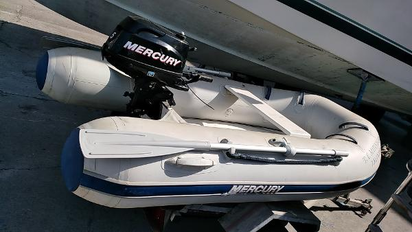 Mercury Inflatables D 250