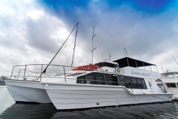 Custom Hydrofield 55