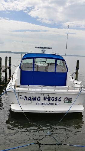 Sea Ray 370 Sea Ray The Dawg House