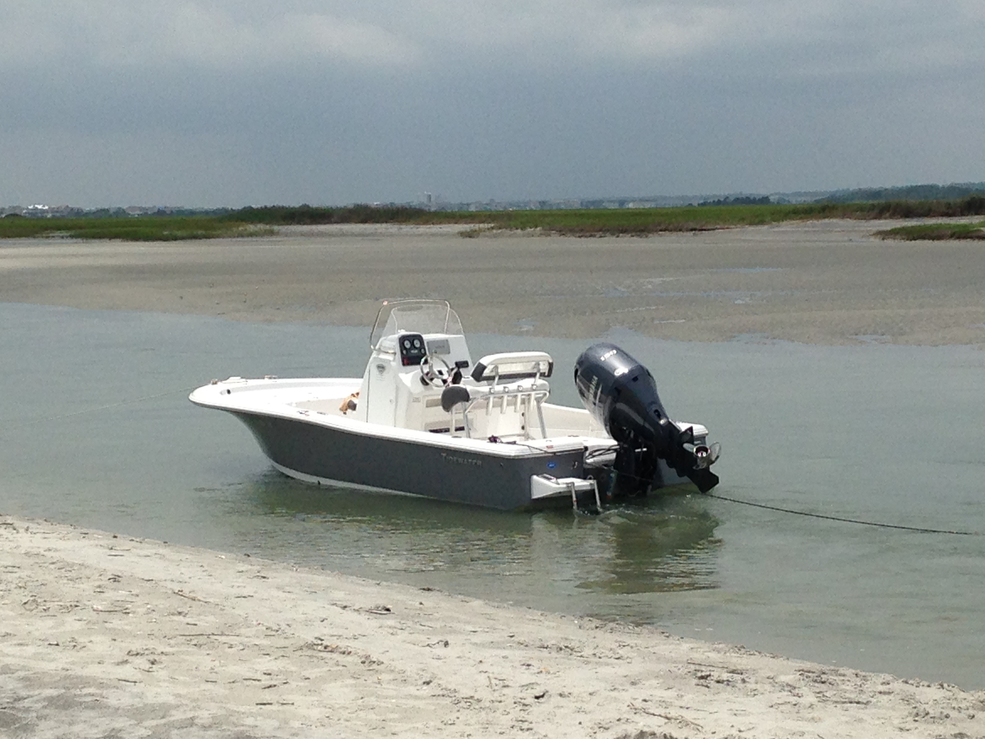 Tidewater Carolina Bay 2000