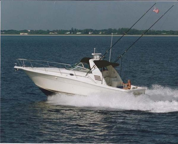 Sea Ray Amberjack Main Profile