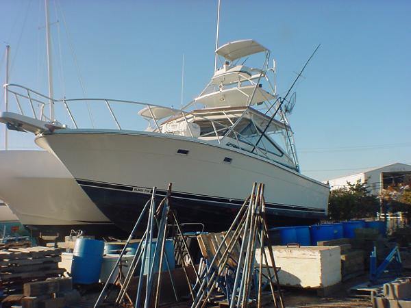 Blackfin 36 Combi