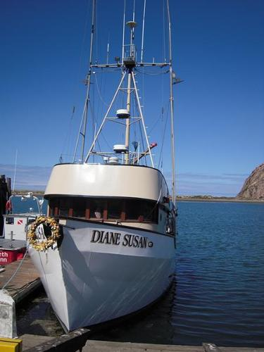 Morro Bay (CA) United States  city pictures gallery : Morro Bay,CA,United States