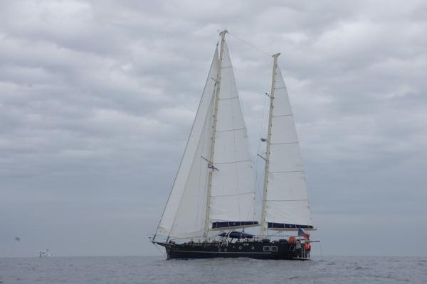 Sailing boat sailing boat 21.68
