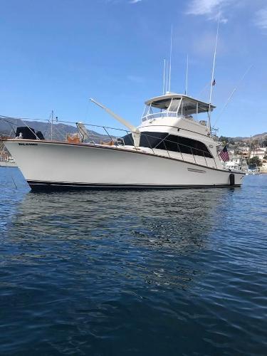 """Ocean Yachts Super Sport """"Rig A Tony"""" at Catalina Island"""